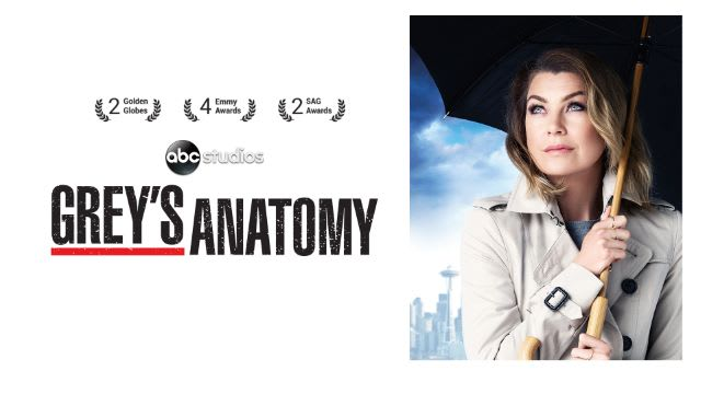 Watch Greys Anatomy Full Episodes Online Streaming Exclusively